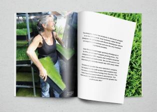 LUSH Fresh Matters magazine