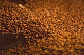 Photography LUSH Cosmetics Sacred Ground Coffee
